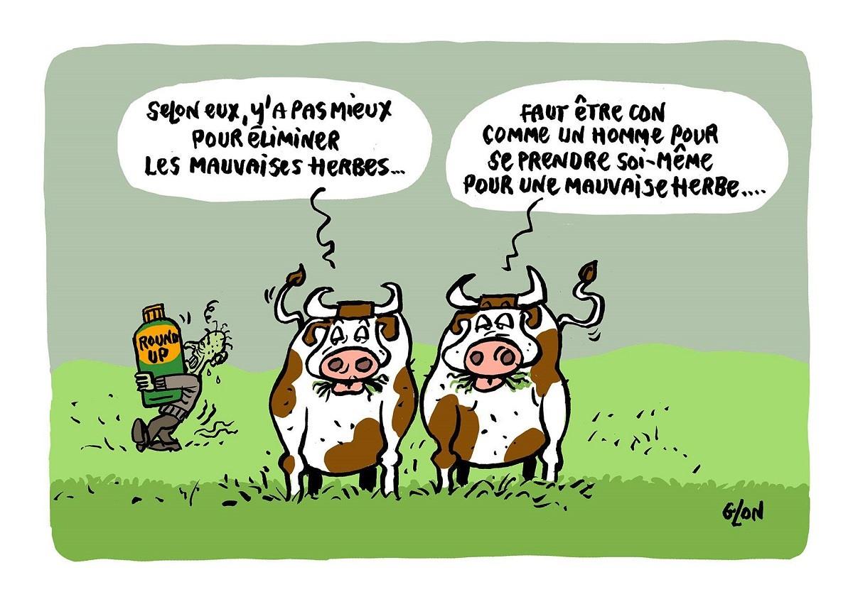 dessi nhumoristique de deux vaches qui voient passer un homme malade qui porte du Roundup