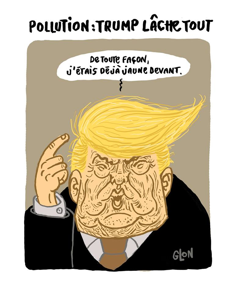 dessin humoristique de la chevelure de Donald Trump