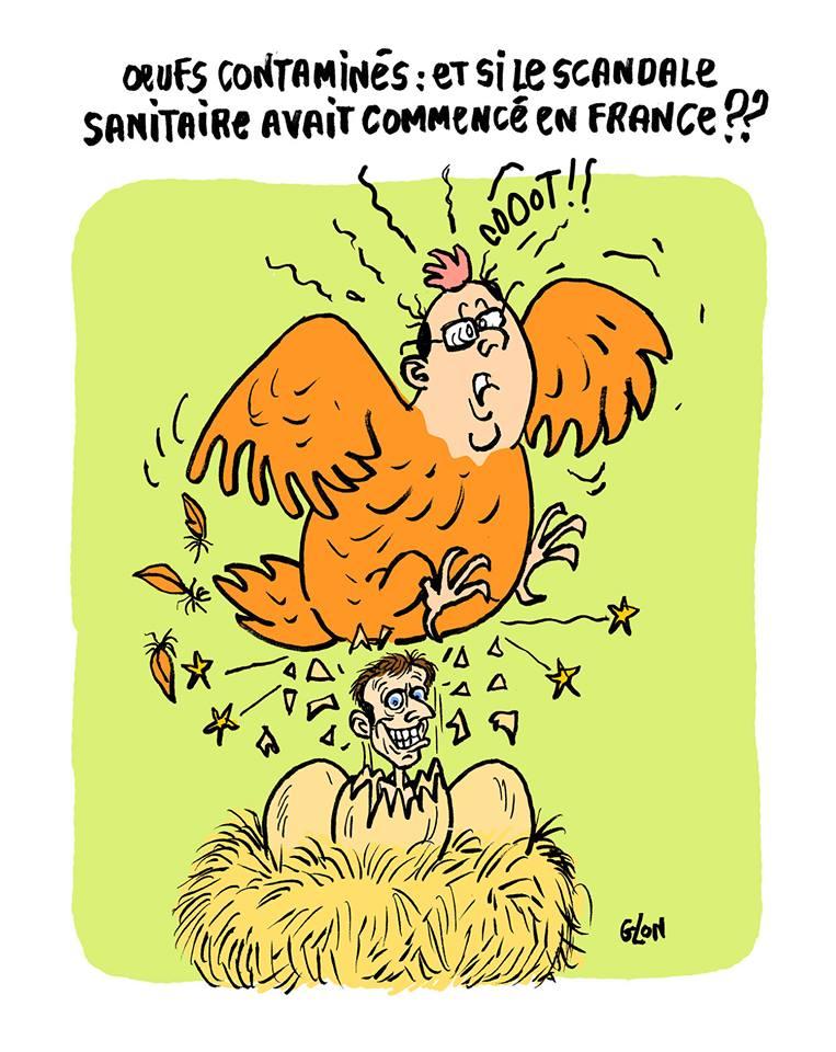 dessin humoristique de la poule Hollande qui couve l'oeuf Macron