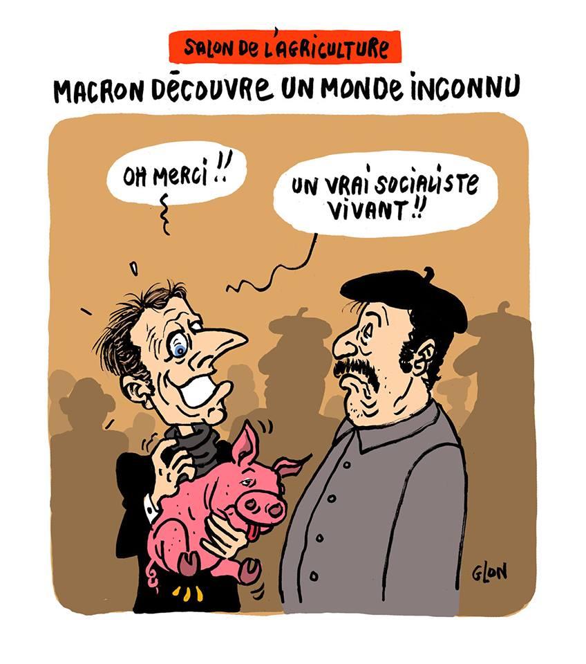 dessin drôle d'Emmanuel Macron qui reçoit un petit cochon au Salon de l'agriculture
