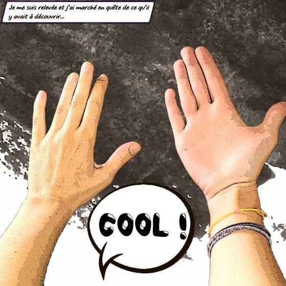 photomontage de présentation des moutons noirs - Les mains d'Émilie
