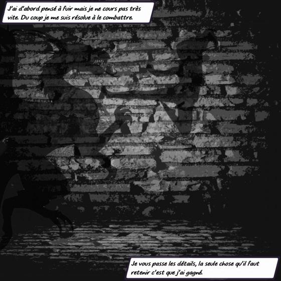 photomontage de présentation des moutons noirs - Émilie combat le dragon
