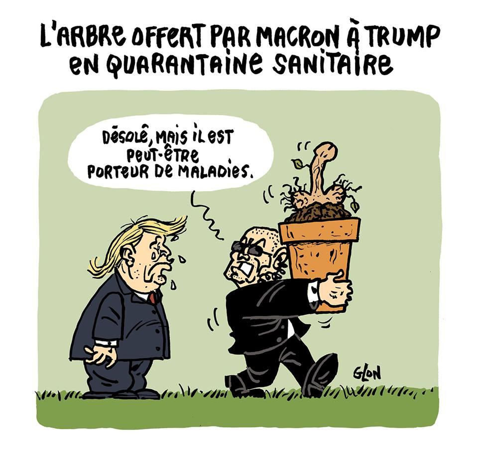 dessin d'actualité humoristique de la mise en quarantaine sanitaire de l'arbre offert par Emmanuel Macron à Donald Trump