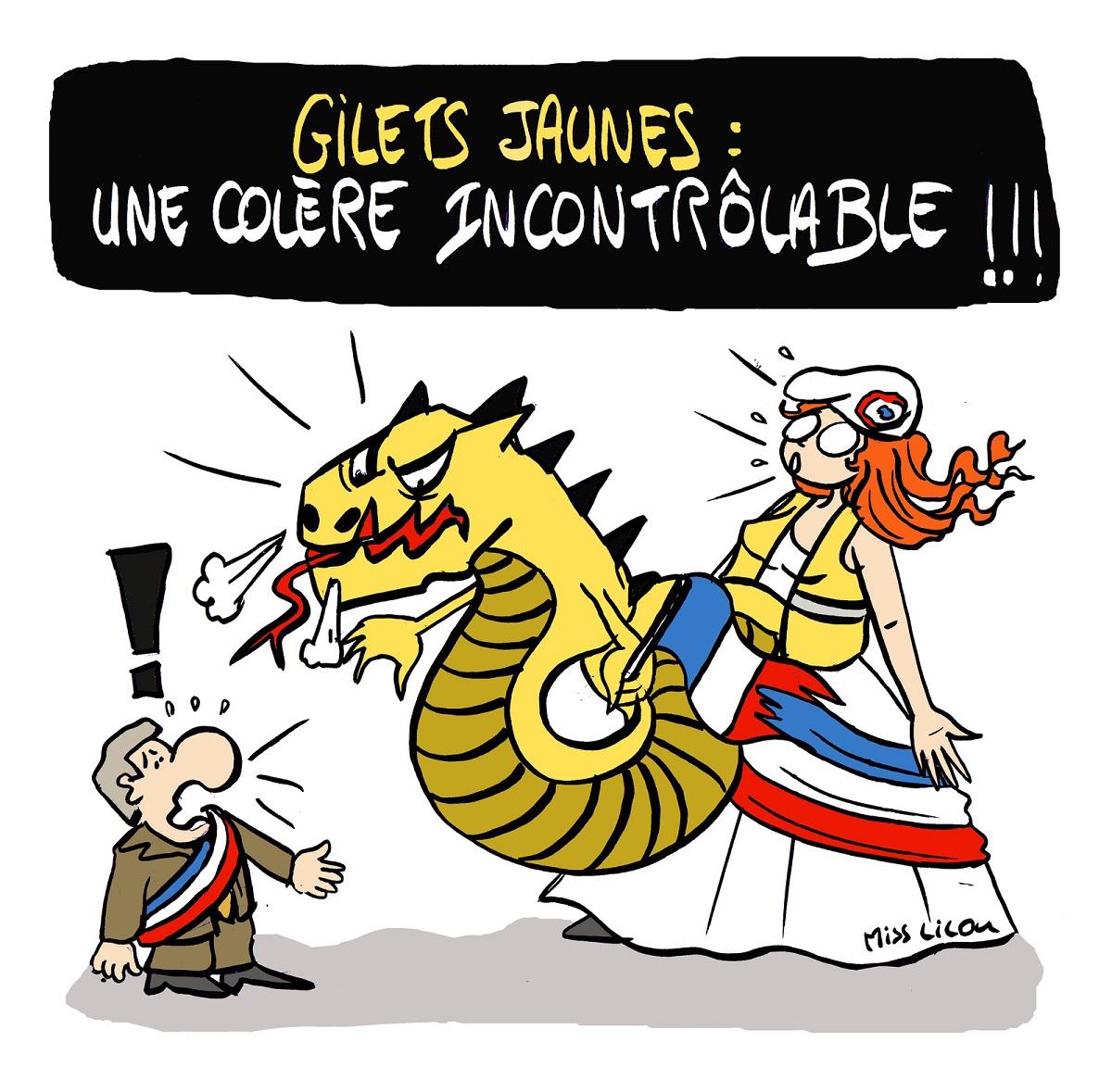 dessin d'actualité humoristique sur la colère du peuple en gilet jaune face aux élus