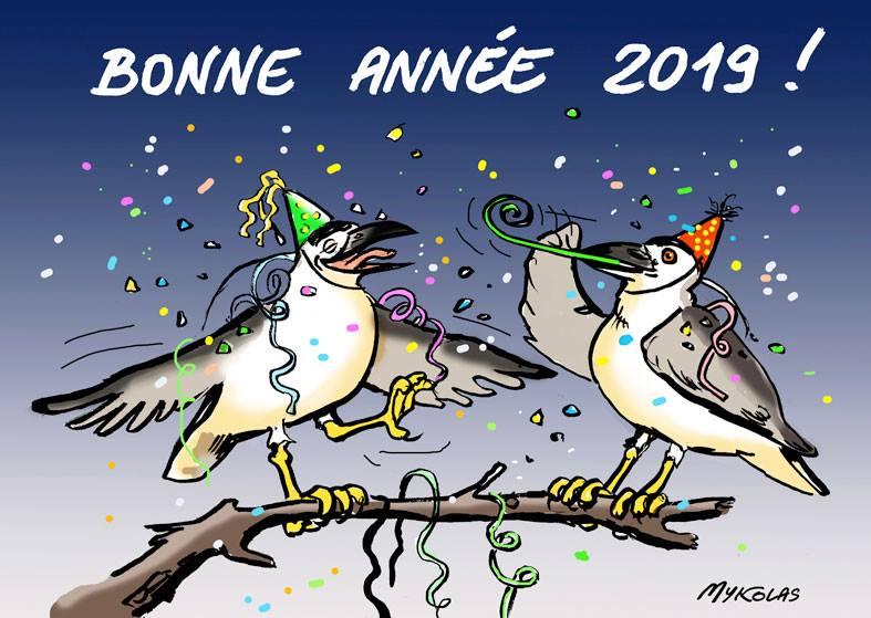 dessin d'actualité humoristique sur la bonne année 2019