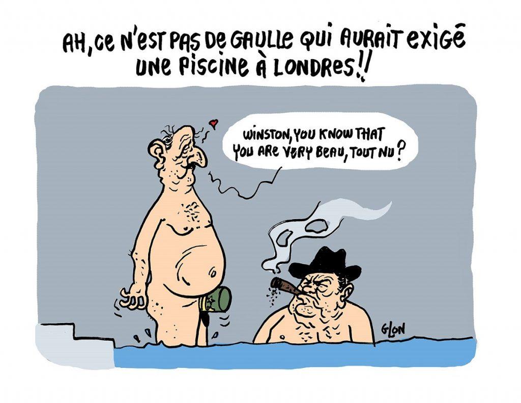 dessin d'actualité humoristique sur la piscine voulue par Emmanuel Macron