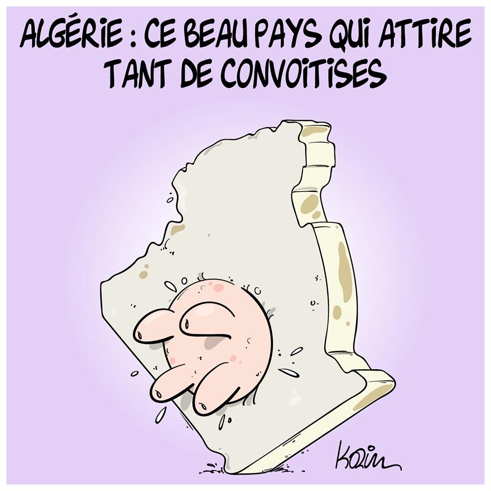 dessin d'actualité humoristique sur l'attractivité de l'Algérie
