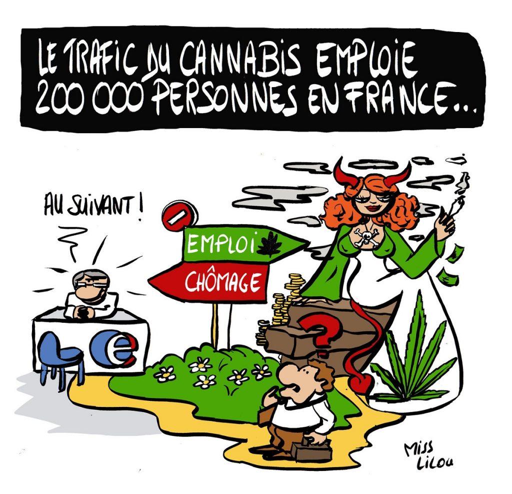 dessin d'actualité humoristique sur le trafic de cannabis en France