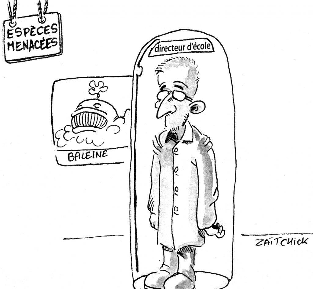 dessin d'actualité humoristique sur la loi Blanquer et la suppression des directeurs d'école primaire
