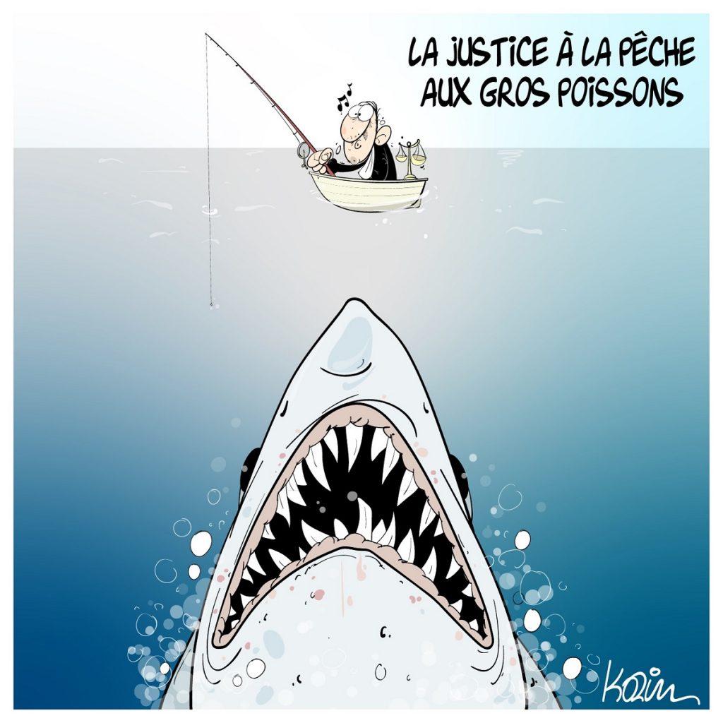 dessin d'actualité humoristique sur la justice algérienne s'attaquant à des requins