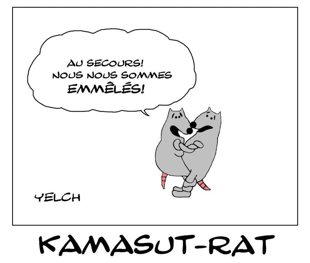 dessin de Yelch sur le kamasutra des rats