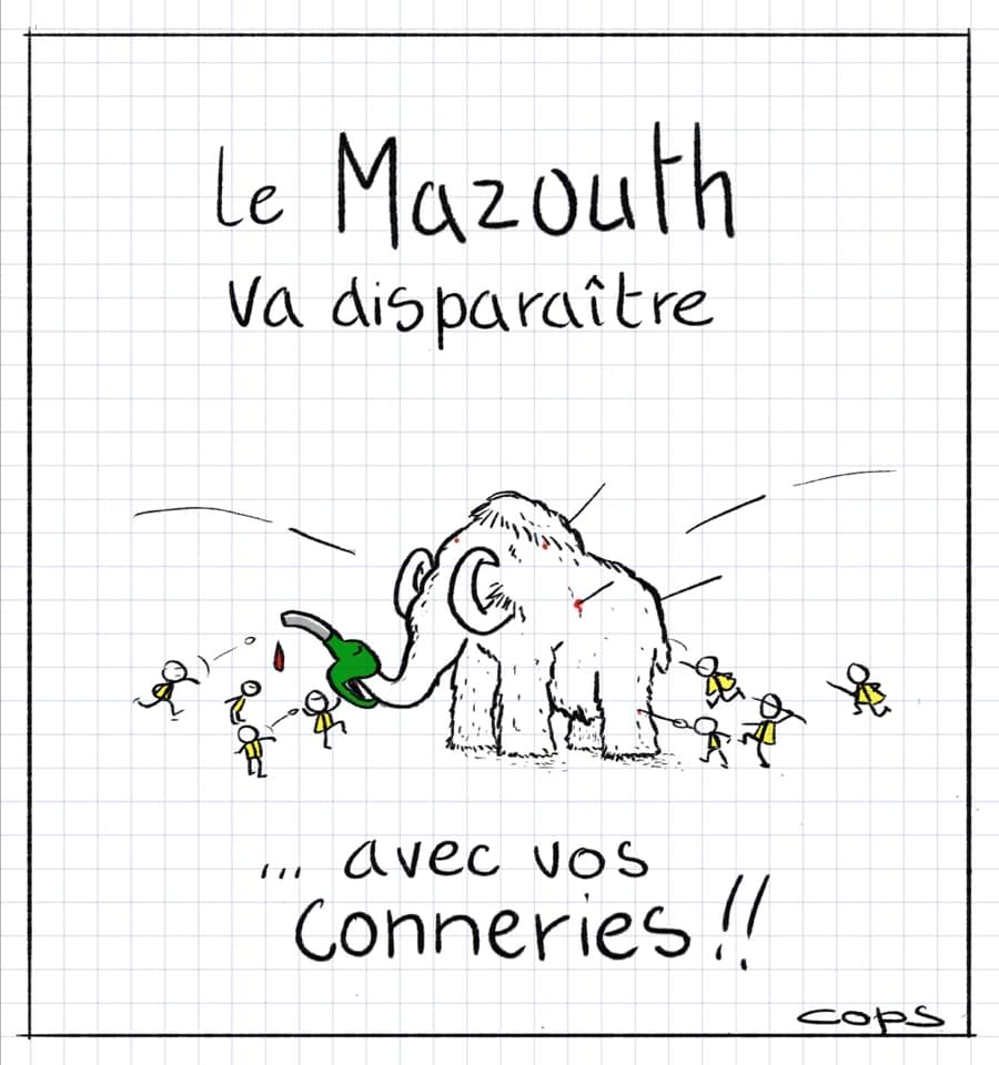 dessin de Cops sur la disparition du mazouth