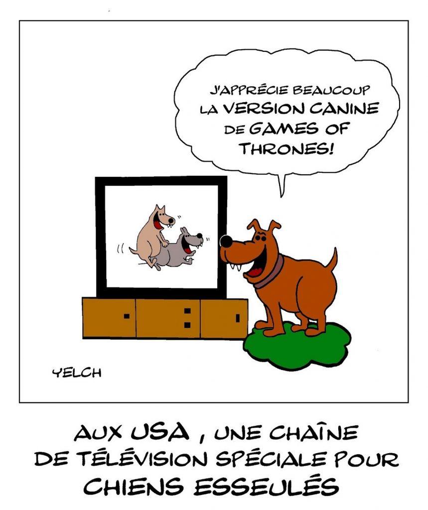 dessin de Yelch sur la création aux États-Unis d'une chaîne de télé pour les chiens solitaires