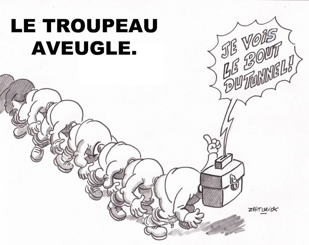 dessin d'actualité humoristique sur les élections européennes et les élections en général