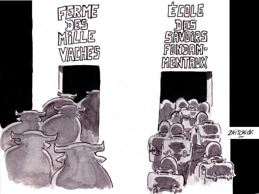 dessin d'actualité humoristique sur la loi Blanquer, l'école des savoirs fondamentaux et la ferme des mille vaches