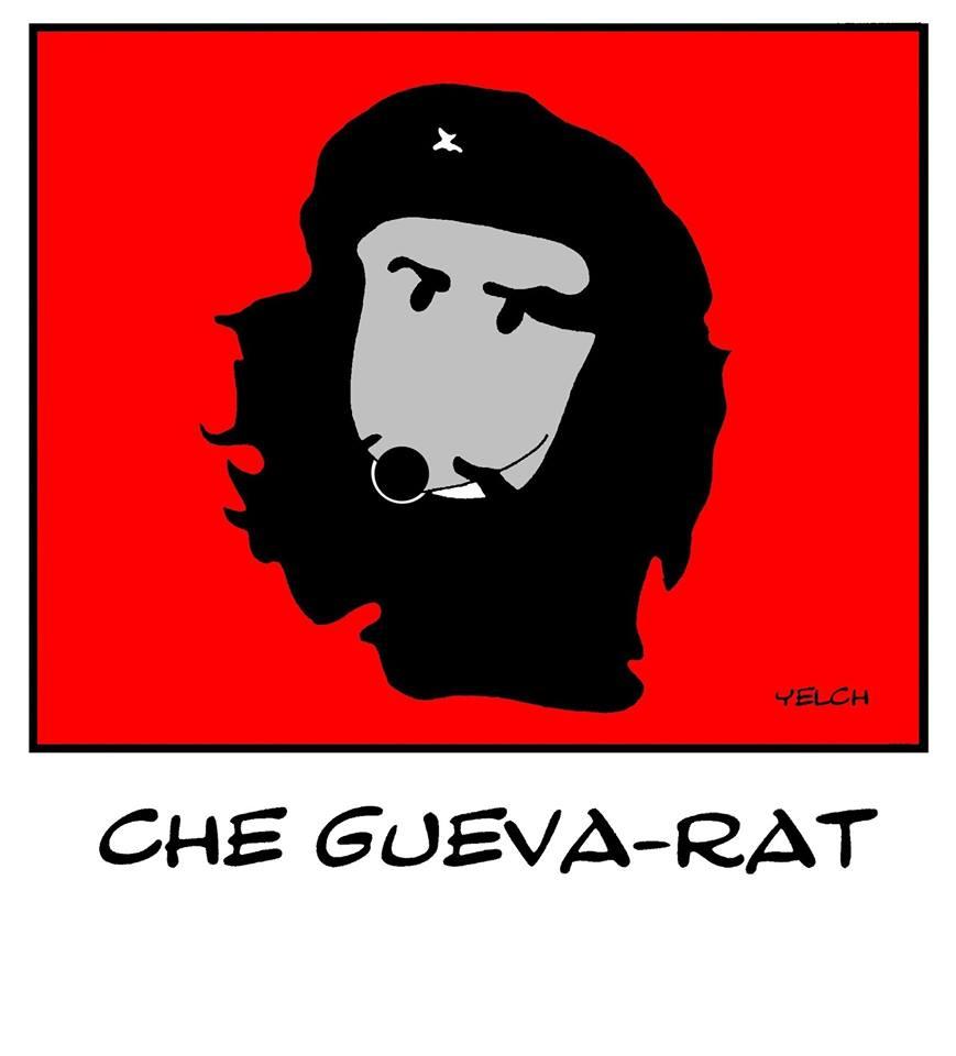 dessin de Yelch sur Che Guevara