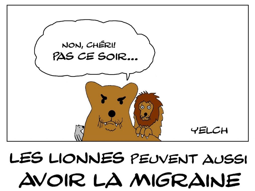 dessin de Yelch sur la migraine des lionnes