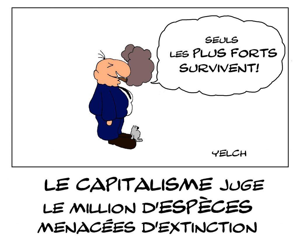 dessin de Yelch sur le million d'espèces menacée d'extinction et le capitalisme