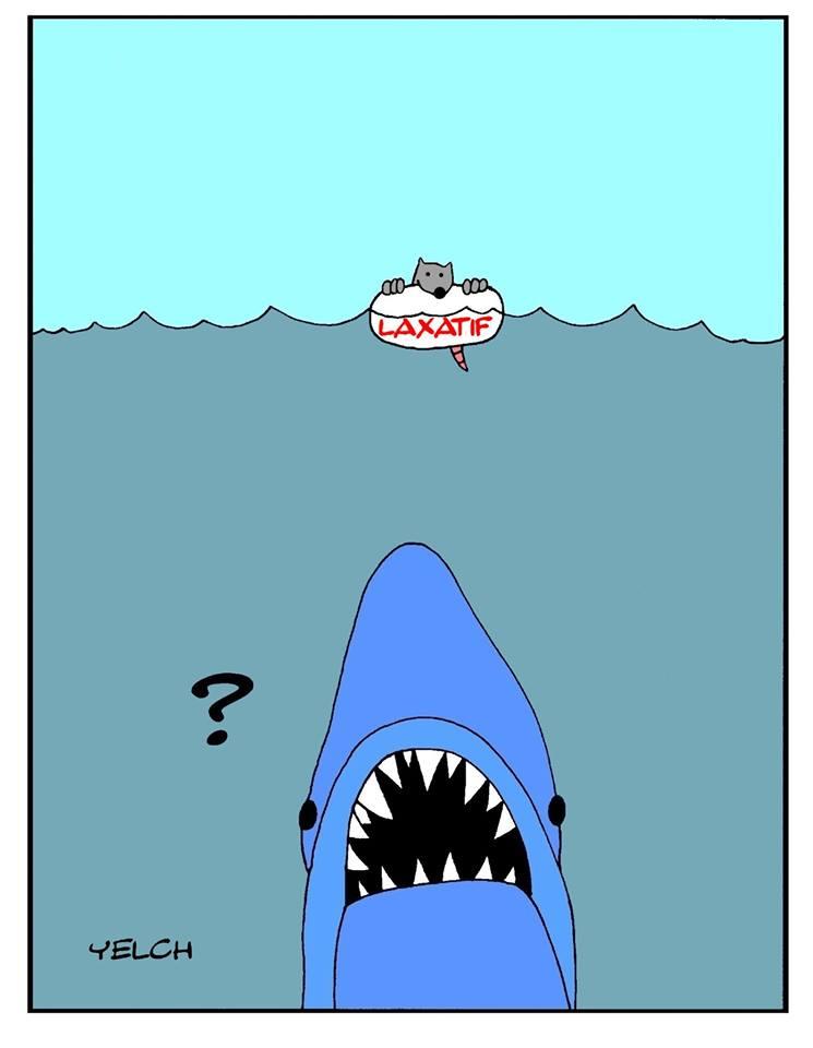 dessin de Yelch sur les dents de la mer