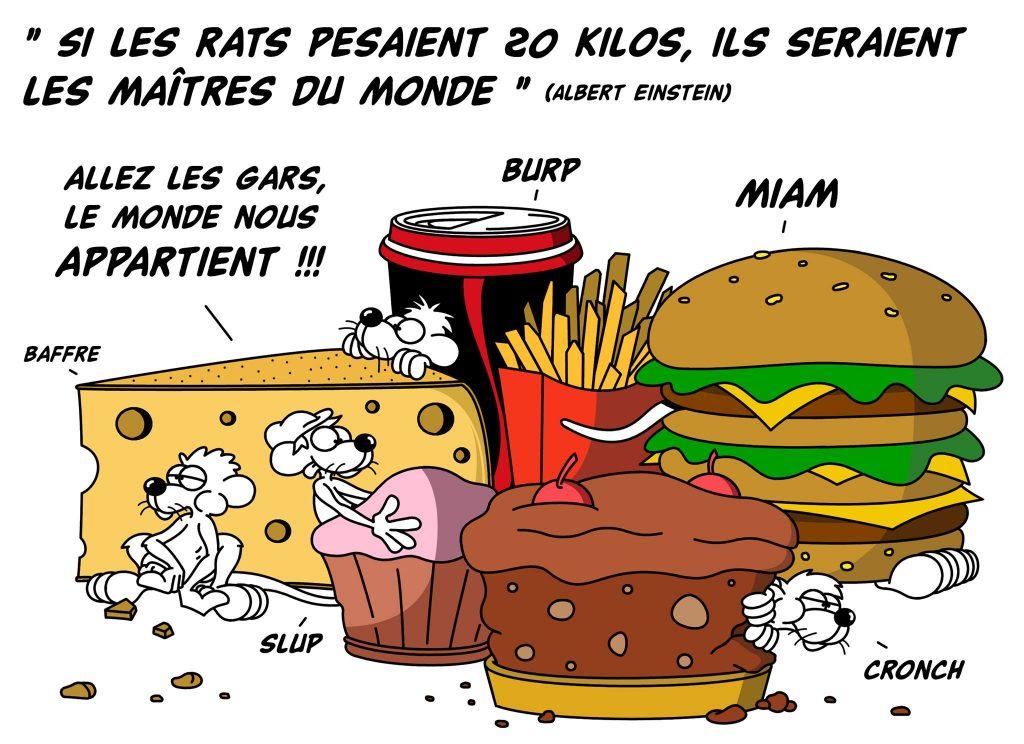 dessin d'actualité humoristique sur la citation d'Albert Einstein sur les rats maîtres du monde