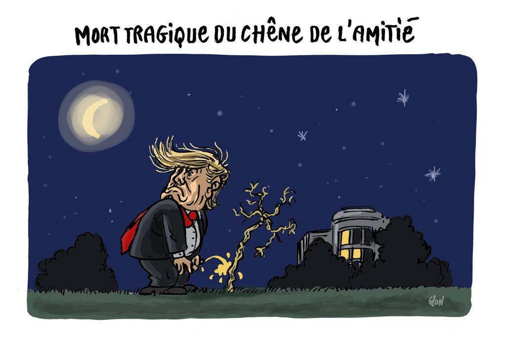 dessin d'actualité humoristique sur la mort du chêne de l'amitié franco-américaine