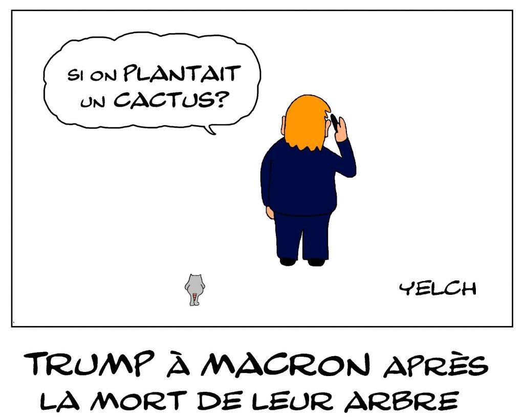 dessin de Yelch sur la mort du chêne de l'amitié franco-américaine