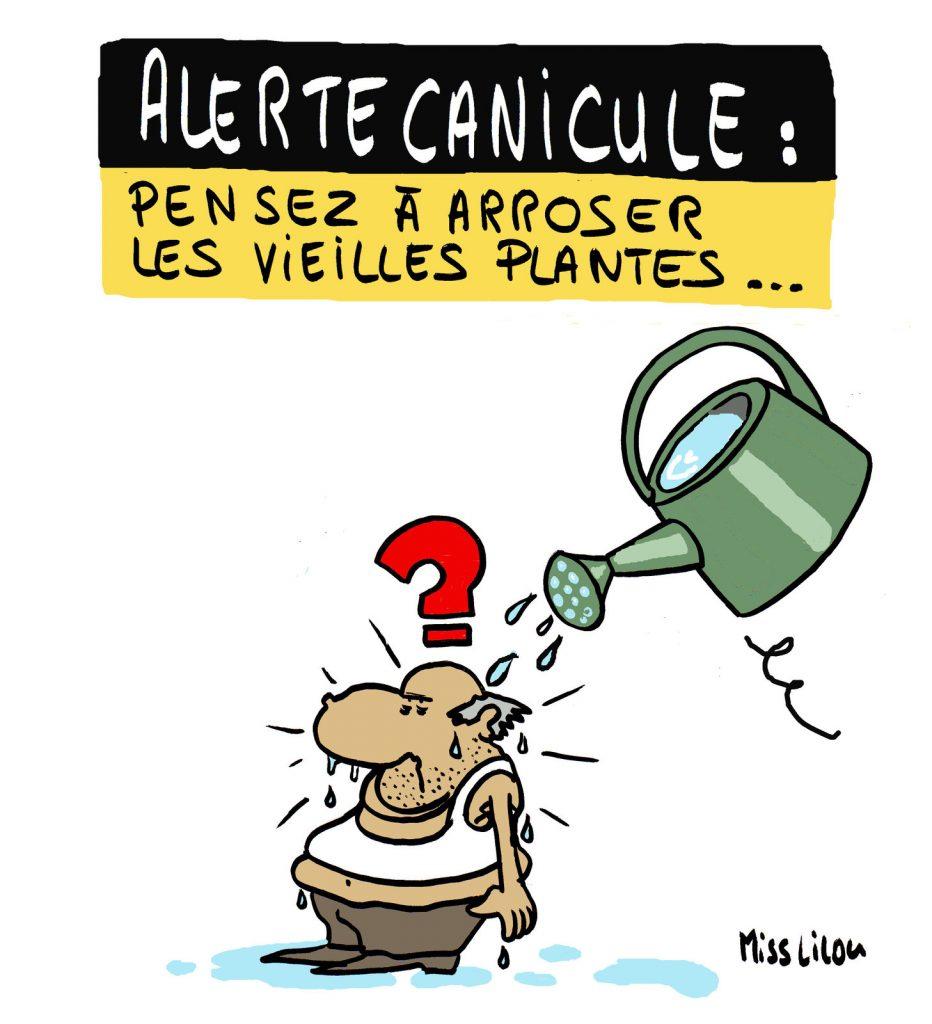 dessin de Miss Lilou sur la canicule annoncée en France