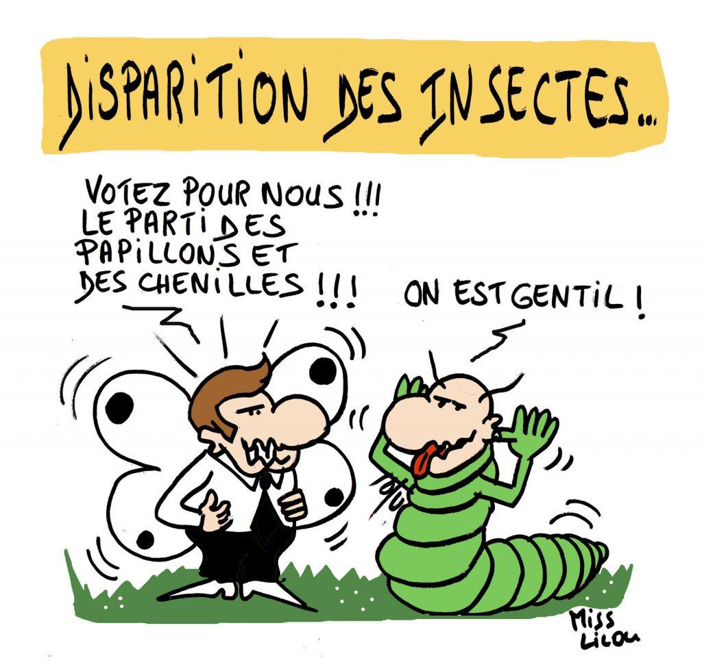 dessin de Miss Lilou sur la disparition des insectes