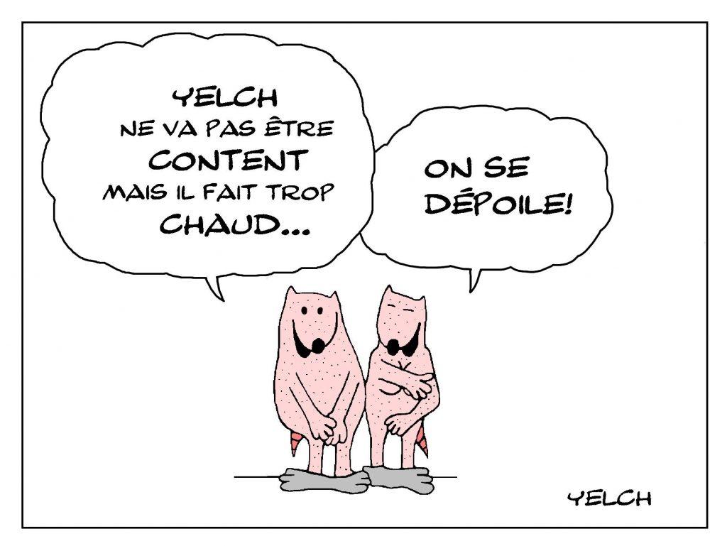 dessin de Yelch sur la chaleur caniculaire en France