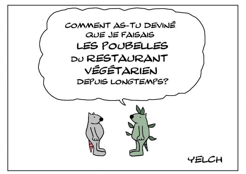 dessin de Yelch sur les rats végétariens