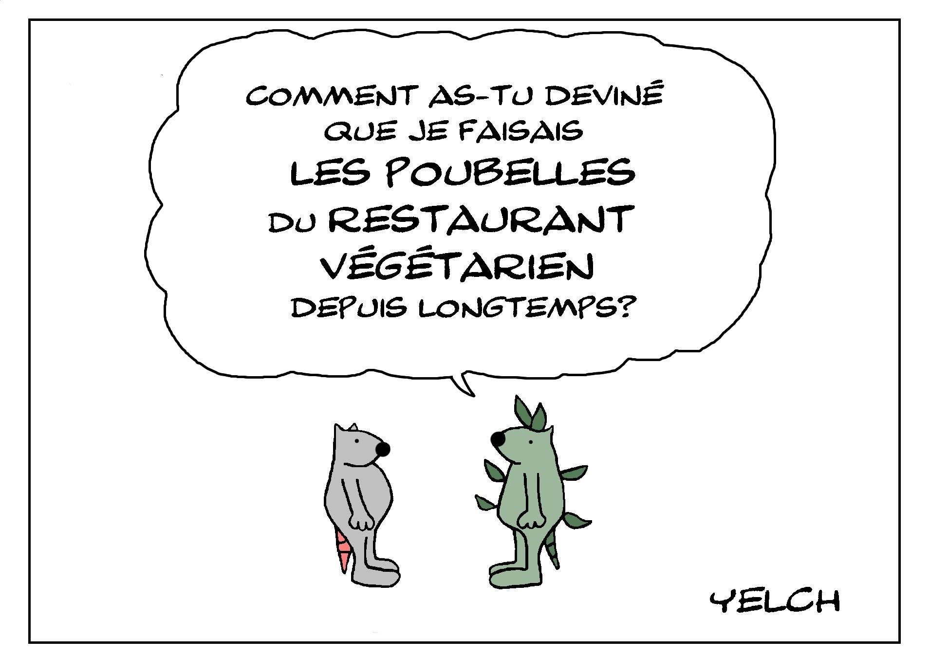 Grains Chef Nouveauté Tablier de quoi Vegan Zombies Eat Végétarien Pun Blague