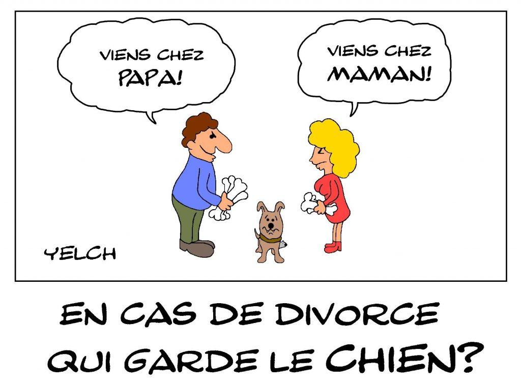 dessin de Yelch sur la garde du chien en cas de divorce