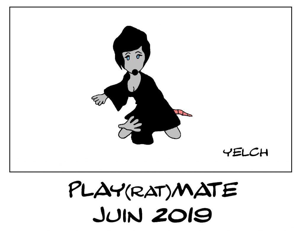 dessin de Yelch sur la playmate du mois