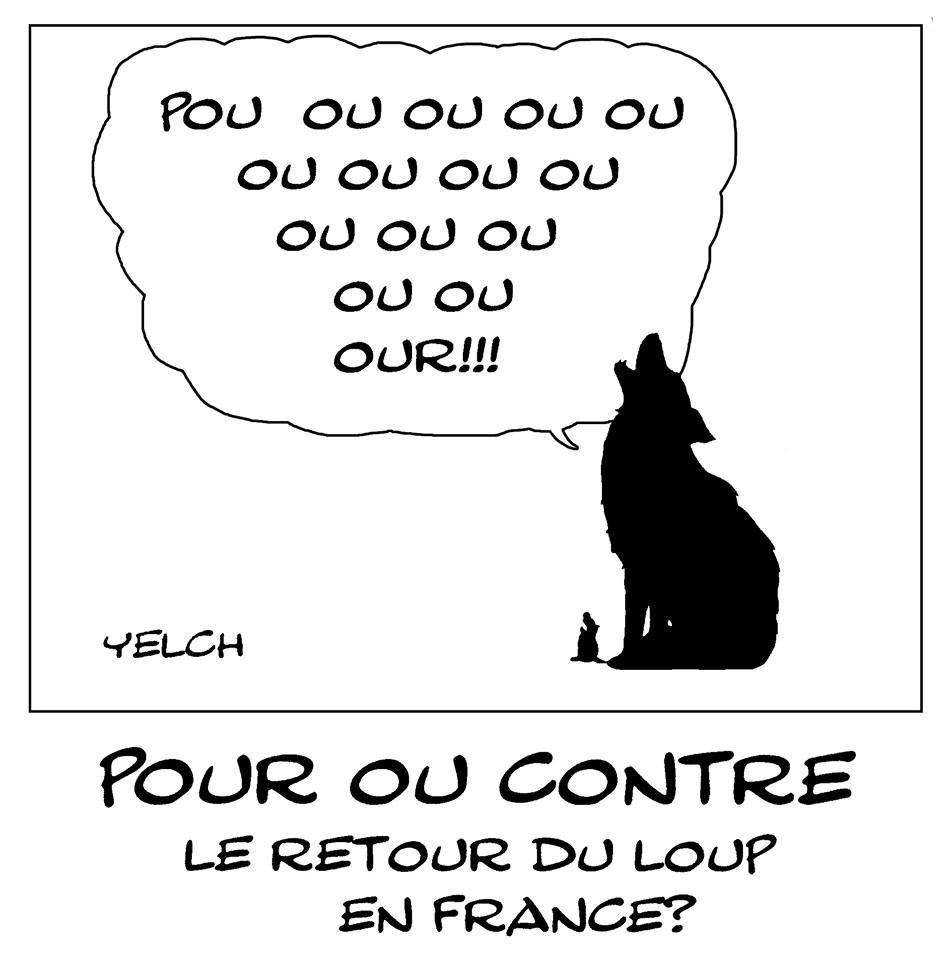dessin de Yelch sur le retour du loup en France