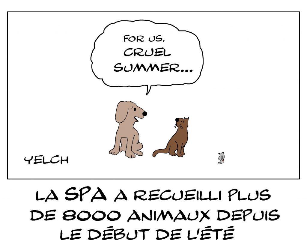dessin de Yelch sur les abandons d'animaux durant l'été
