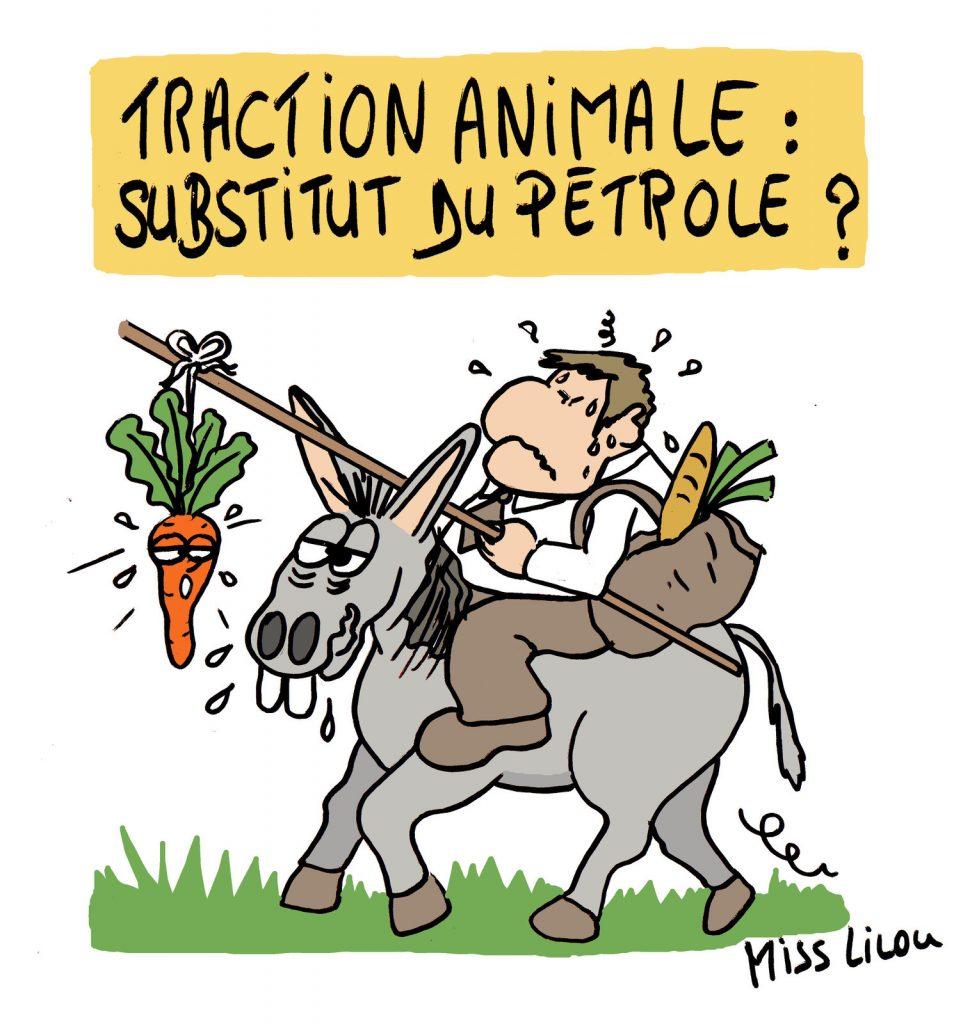 dessin de Miss Lilou sur l'avenir des déplacements et la traction animale