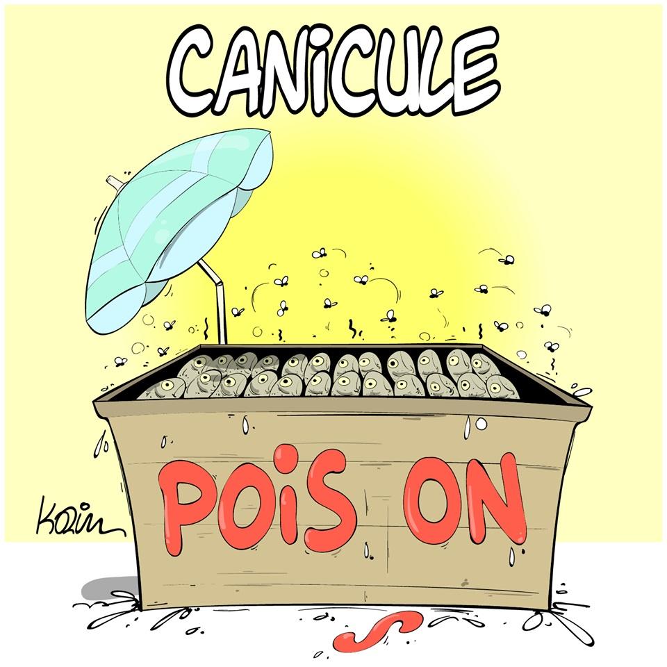 dessin d'actualité humoristique sur la canicule et ses dangers