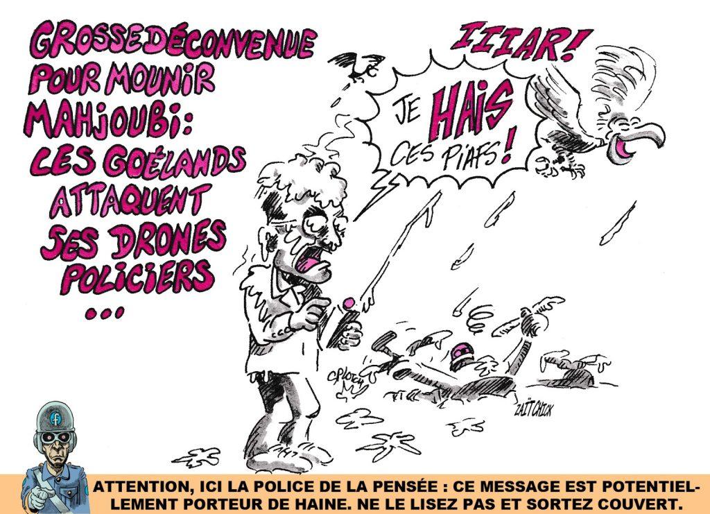 dessin humoristique de Zaïtchick sur les attaques de drones policiers par des goélands
