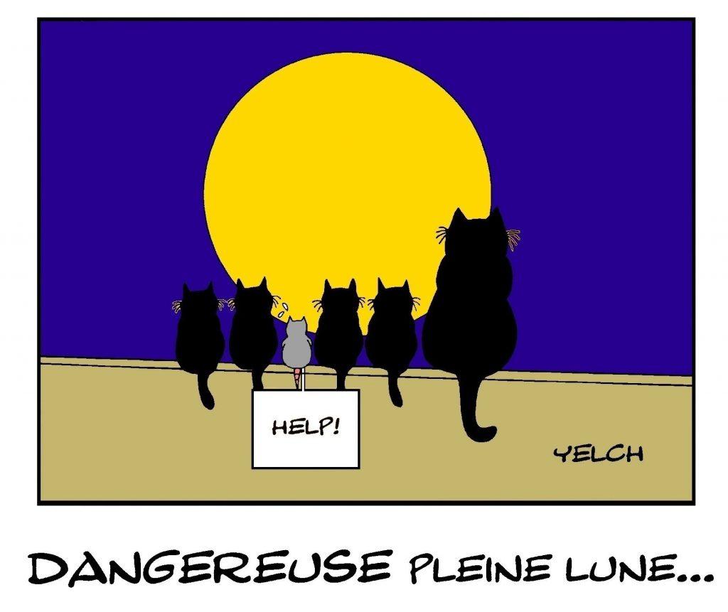 dessin de Yelch sur la dangerosité de la pleine lune et les chats