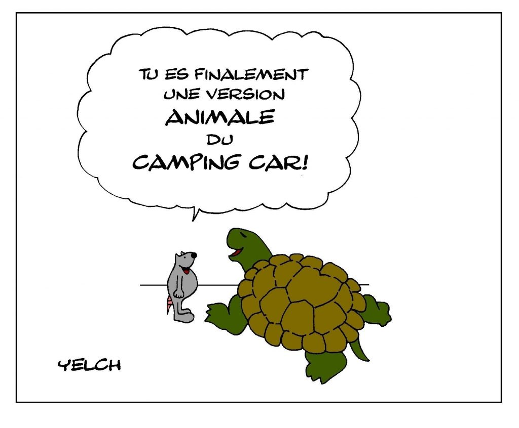 dessin de Yelch sur les tortues et les camping-car