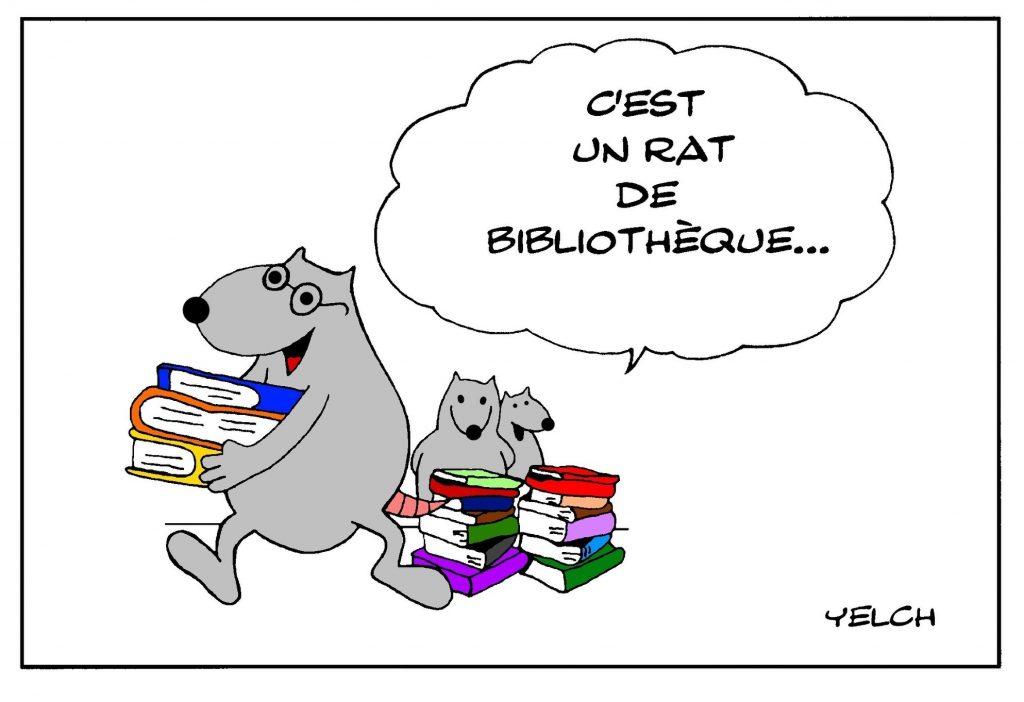 dessin de Yelch sur les rats de bibliothèque