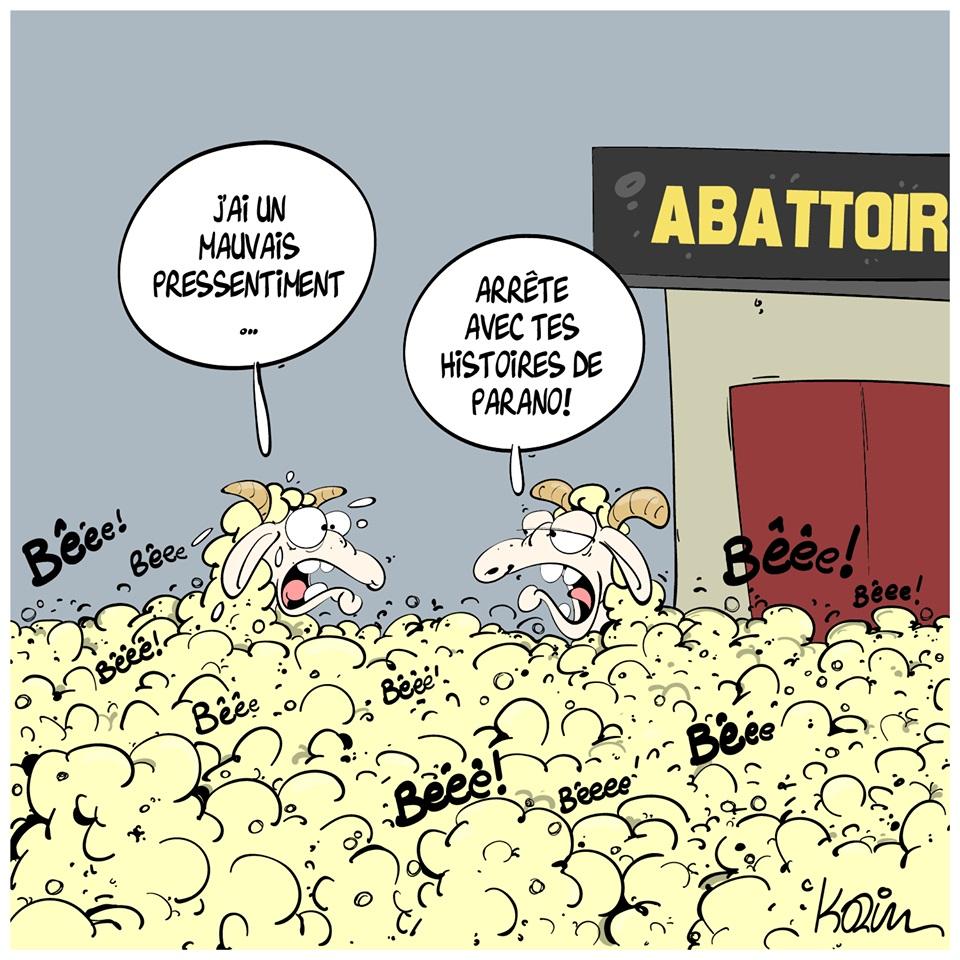 dessin d'actualité humoristique de Karim sur l'Aïd el-Kébir et l'abattage des moutons