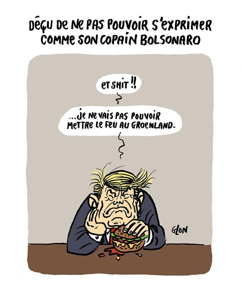 dessin humoristique de Zaïtchick sur les incendies qui ravagent la forêt amazonienne, Jair Bolsonaro, et Donald Trump qui souhaite acheter le Groenland