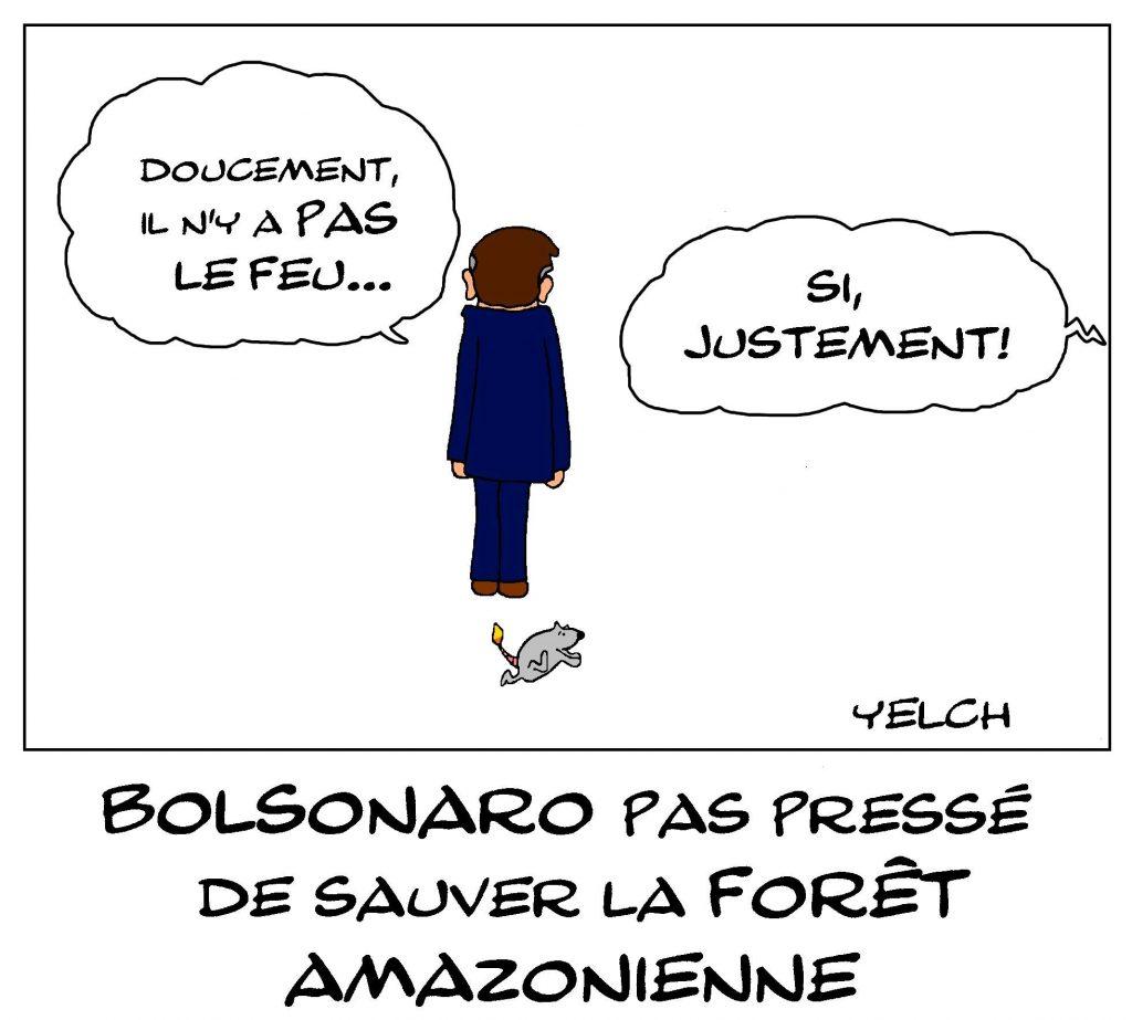 dessin de Yelch sur les incendies qui ravagent la forêt amazonienne et Jair Bolsonaro