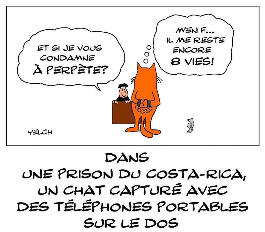dessin de Yelch sur le chat passeur de téléphones portables dans une prison au Costa Rica