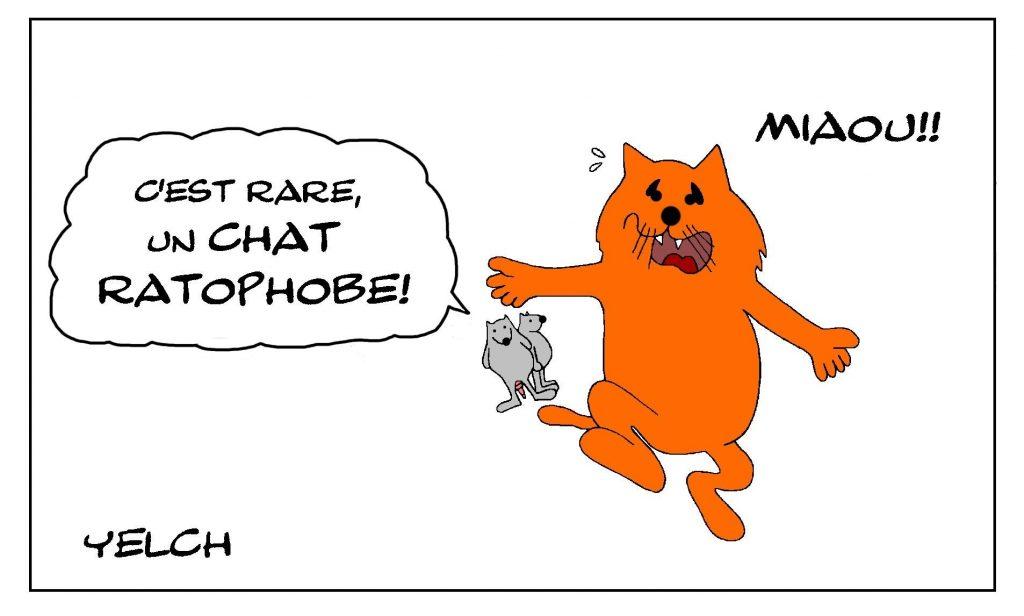 dessin de Yelch sur la musophobie et les chats