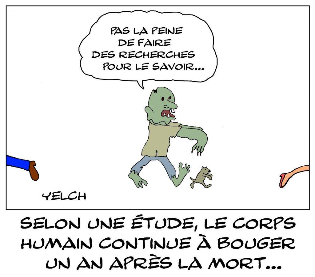 dessin de Yelch sur les recherches australiennes montrant que le corps humain continue à bouger un an après la mort