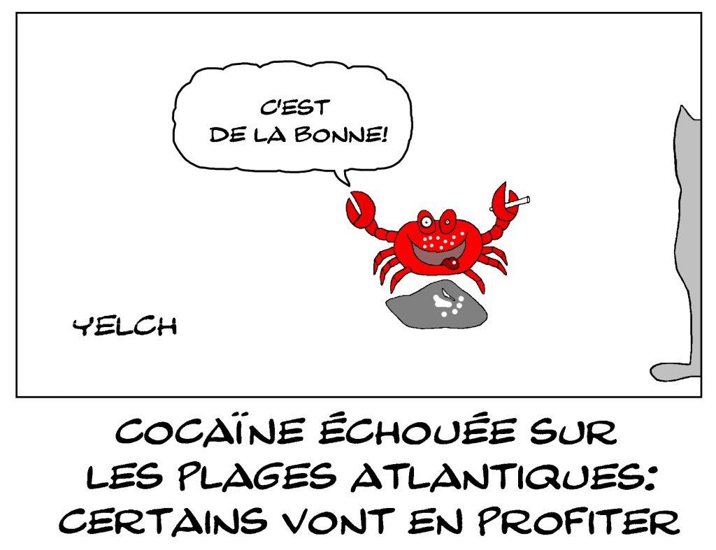 dessin de Yelch sur la cocaïne qui s'échoue sur les plages de l'atlantique