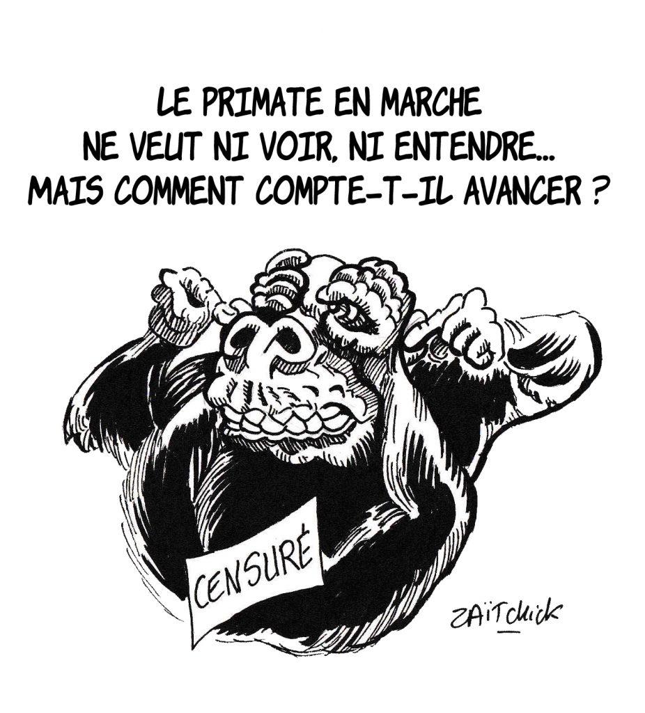 dessin de Zaïtchick sur les primates En Marche