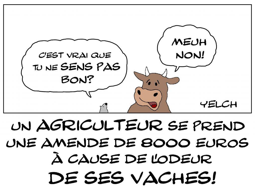 dessin de Yelch sur un agriculteur condamné à une amende de 8000 euros à cause de l'odeur de ses vaches